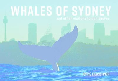 Whales of Sydney