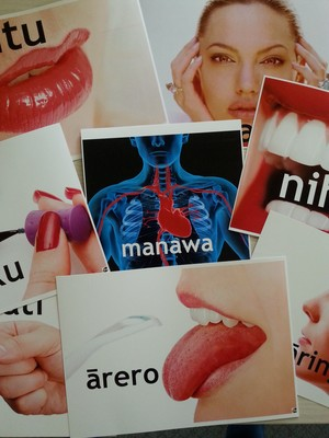 A4 Maori Posters - Parts of the Body (Set of 44)