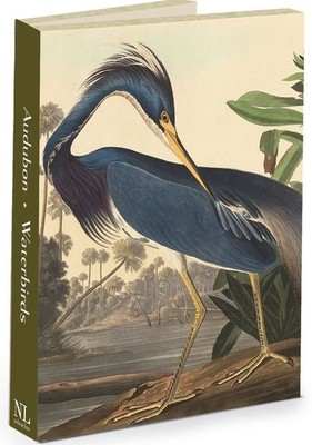 Audubon Waterbirds - pack of 12 note cards
