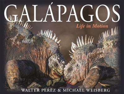 Galápagos - Life in Motion