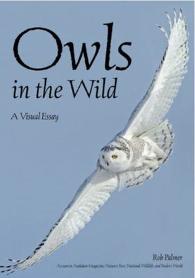 Owls in the Wild - A Visual Tour