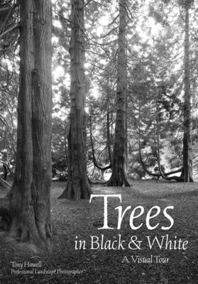 Trees in Black and White - A Visual Essay