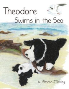 Theodore Swims in The Sea