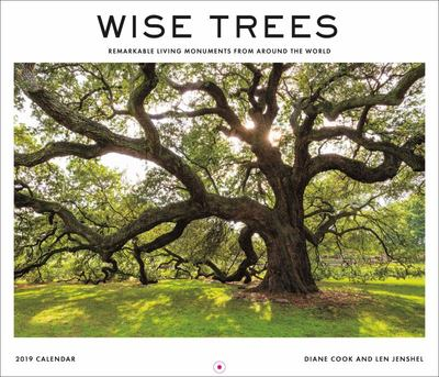 Wise Trees 2019 Calendar : Remarkable Living Monuments from Around the World