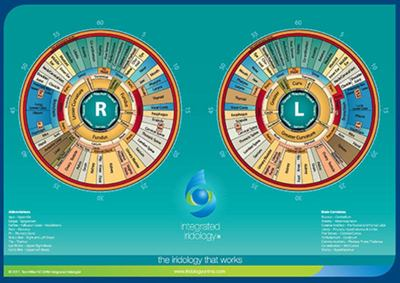Integrated Iridology Desk Chart