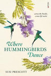 Where Hummingbirds Dance