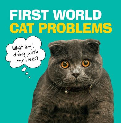 First World Cat Problems - What Am I Doing with My Lives?
