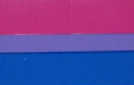 "Sticker - Bisexual Pride (2"" x3"")"