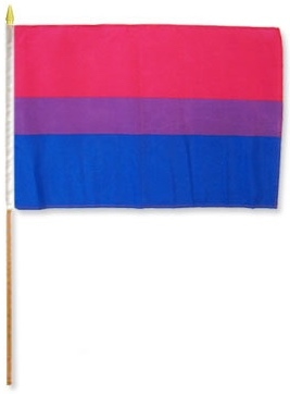 "Flag – Bisexual Pride on Stick 12"" x 18"""