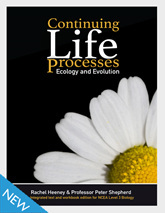 Homepage_edify-continuing-life-process-new-648h-165