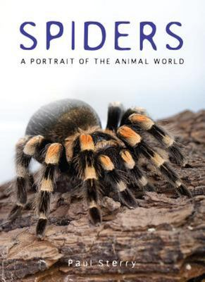 Spiders - A Portrait of the Animal World