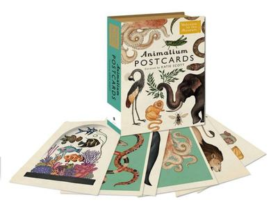 Animalium Postcards (Welcome to the Museum)