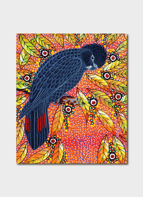 Card - Oral James Roberts - Red Tailed Cockatoo