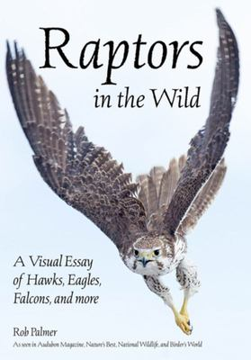 Raptors in the Wild - A Visual Essay of Hawks, Eagles, Falcons, and More