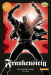 Frankenstein : The Graphic Novel: Original Text