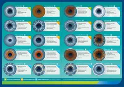 Integrated Iridology Constitutions Chart