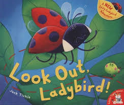 Look Out Ladybird!