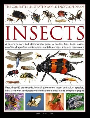 The Complete Illustrated World Encyclopedia of Insects - A Natural History and Identification Guide to Beetles, Flies, Bees, Wasps, Mayflies, Dragonflies, Cockroaches, Mantids, Earwigs, Ants, and Many More