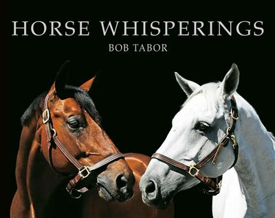 Horse Whisperings Portraits by Bob Tabor