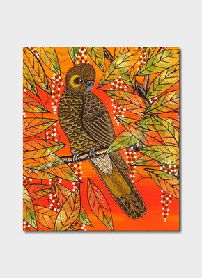 Card - Oral James Roberts - Yellow Tailed Cockatoo