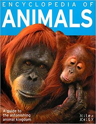 Encyclopedia Of Animals - 384 Pages