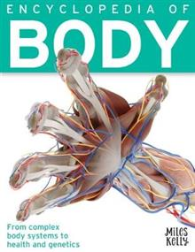 Encyclopedia of Body - 384 Pages