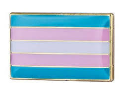 Pin – Transgender (small)