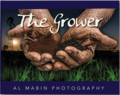 The Grower - The Roots of Australia (HB)