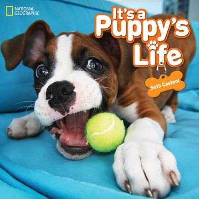 It's a Puppy's Life