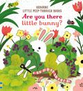 Are You There Little Bunny? (Little Peep-Through Board Book)