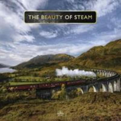Beauty Of Steam