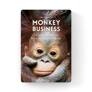 Little affirmations Monkey Business 24 cards wise quotations