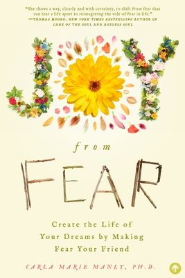 Joy from Fear - Create the Life of Your Dreams by Making Fear Your Friend