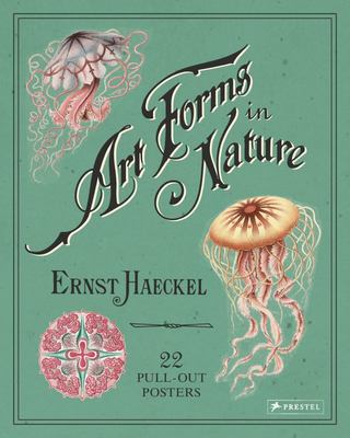Art Forms in Nature - 22 Pull-Out Posters