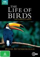 Life of Birds DVD Complete series 1