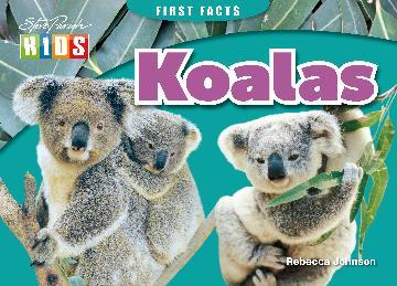 First Field Guide Koalas