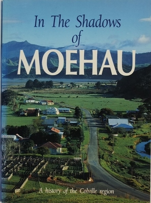In the Shadows of Moehau: A History of the Colville region