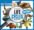 Discover Life Cycles