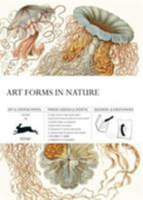 Art Forms in Nature - Gift & Creative Papers