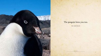 Waddle - A Book of Fun for Penguin Lovers (HB)