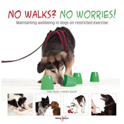 No walks? No worries!Maintaining wellbeing in dogs on restricted exercise
