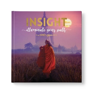 Insight: illuminate your path