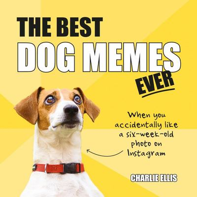 Best Dog Memes Ever - The Funniest Relatable Memes As Told by Dogs