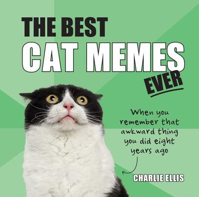Best Cat Memes Ever - The Funniest Relatable Memes As Told by Cats