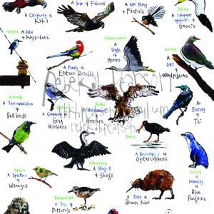 Birds of the Coromandel Poster