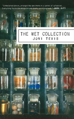 The Wet Collection - A Field Guide to Iridescence and Memory