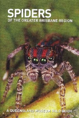 SPIDERS OF GREATER BRISBANE REGION A QUEENSLAND MUSEUM POCKET GUIDE