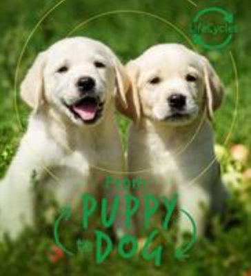 From Pup to Dog (Lifecycles)