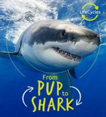 From Pup to Shark (Lifecycles)