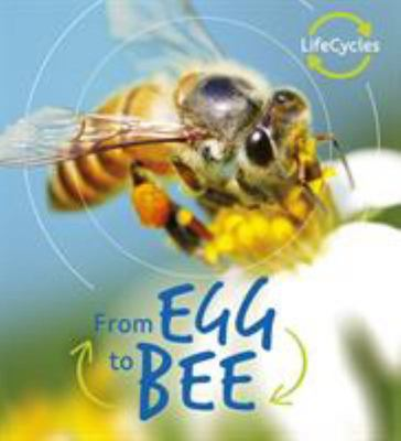 From Egg to Bee (Lifecycles)